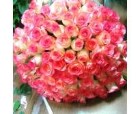 101 роза Брилиант