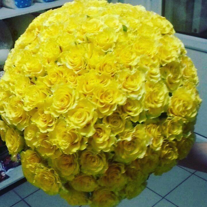 101 роза Солнце