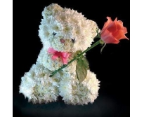 Мишка с розой